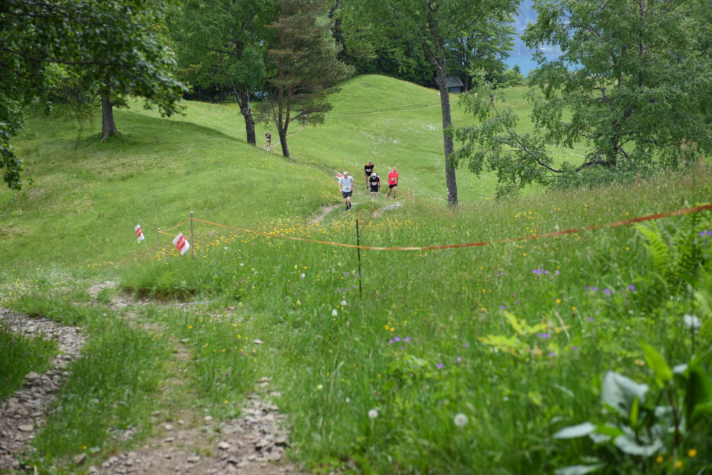 Berglauf_011.jpg