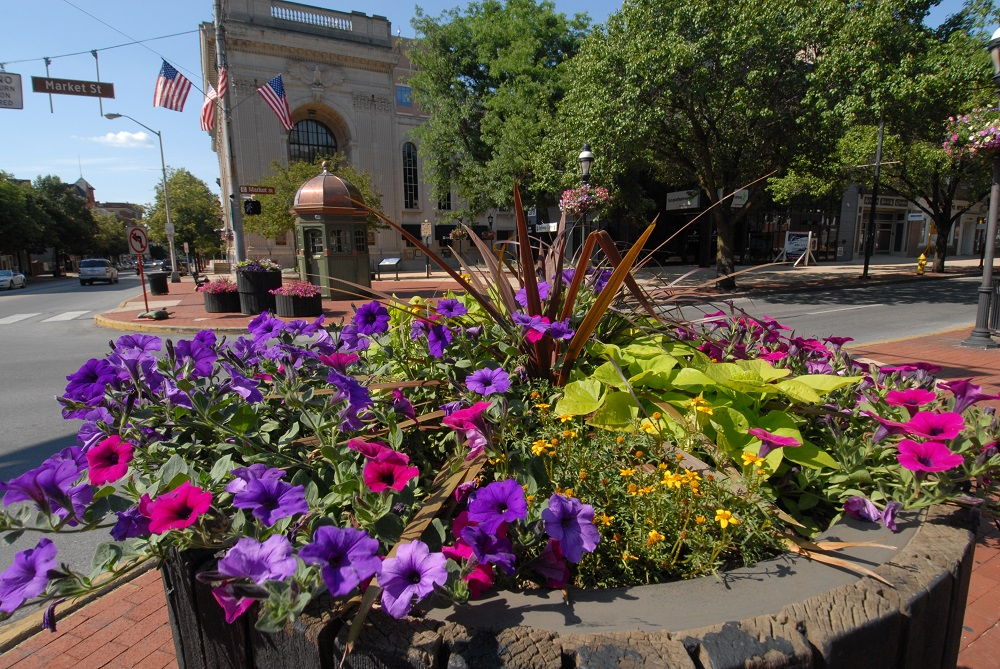 The Garden Club OF YORK WILL FILL More than 90 Downtown Planters on THURsday. Downtown Inc is the primary funder of these particular plantings.