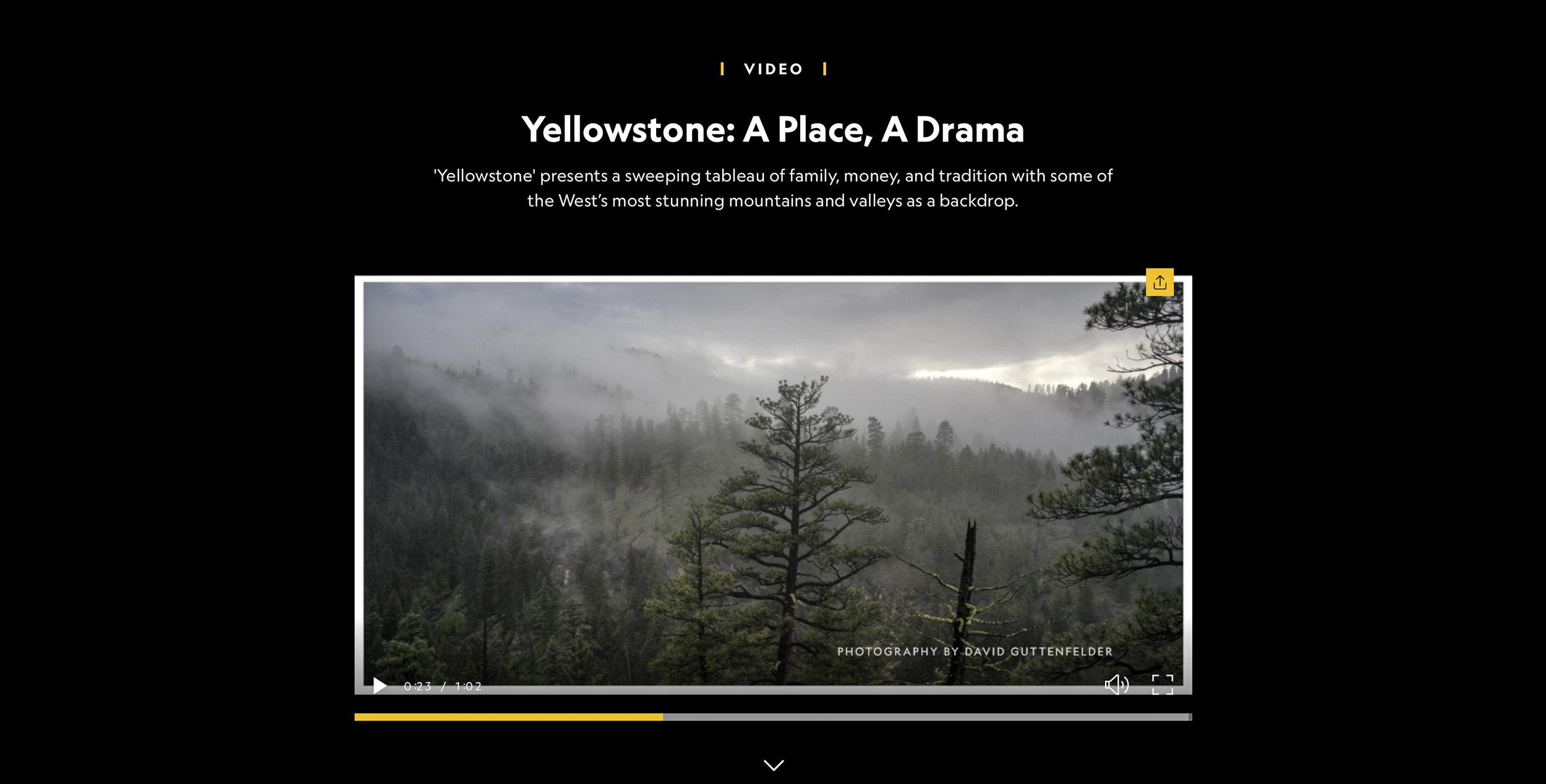 Yellowsonte_Paramount_05.jpg