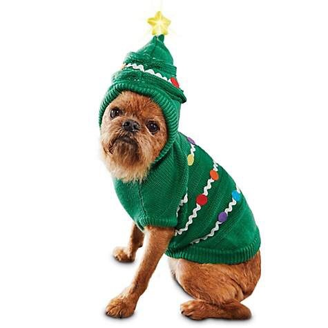 """Dog Not Gone is hosting an Ugly Dog Sweater Party.  Post pictures of your dog wearing an Dog Sweater and the post that gets the most """"likes"""" wins a No Fly Zone dog vest.  Entries must be in by 12/19 12:00pn EST and the winner will be announced shortly after.  Merry Christmas everyone!"""