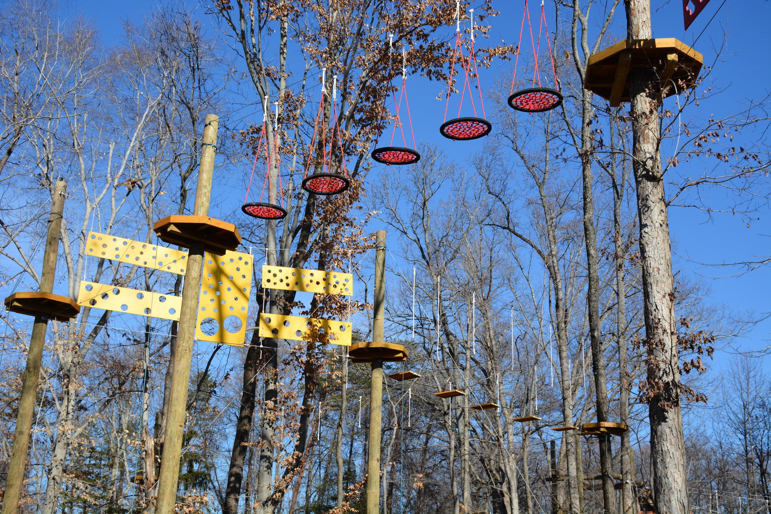 Greensboro Science Center's new Sky Wild treetop adventure course. Image credit: Greensboro Science Center.