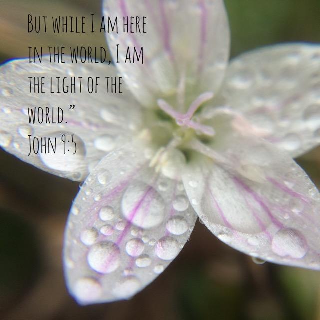 Feb. 21st prompt: John 9:5