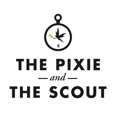pixie scout logo.jpeg