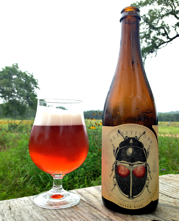 Jester King Detritivore. A wild ale fermented with wild yeast and bacteria native to the Texas hill country and collected by Jester King.  Fermented on second use cherries (first use of the cherries was on a beer called Montmorency vs. Balaton).