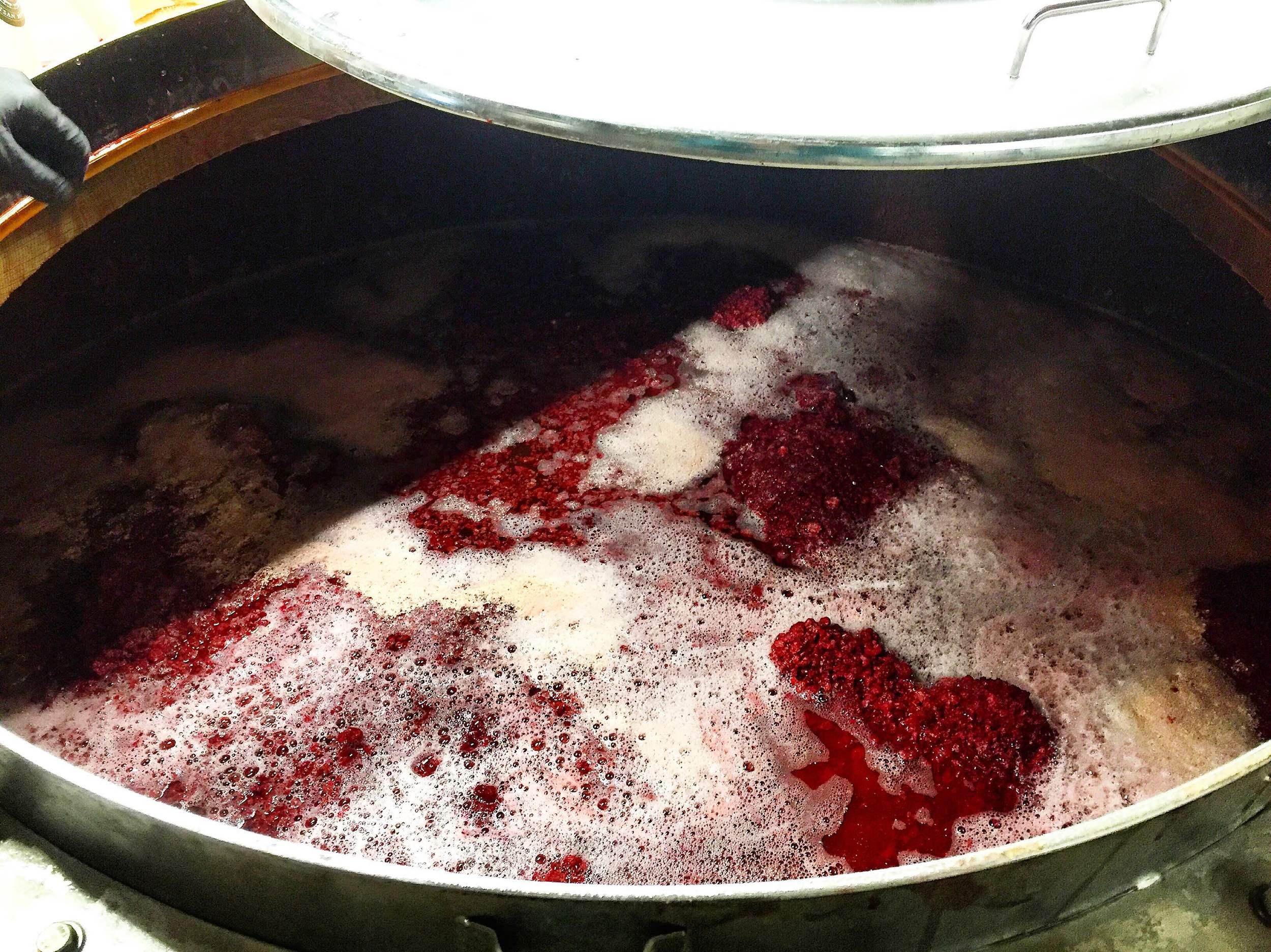 Raspberries in foeder