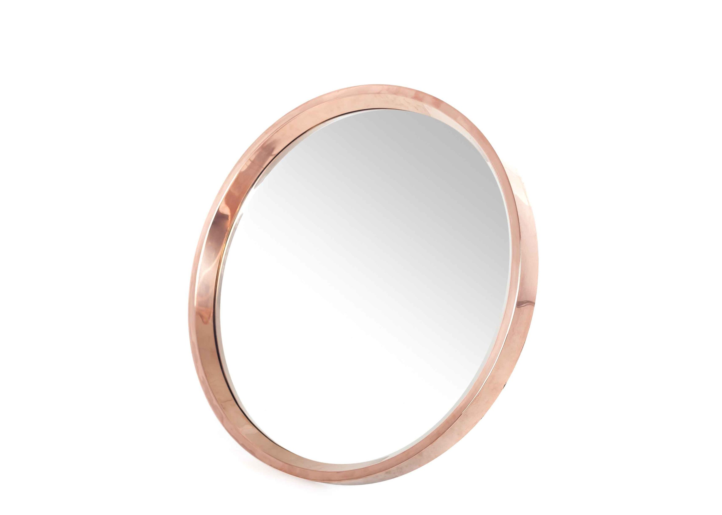 Rosie Mirror Angle_low res.jpg