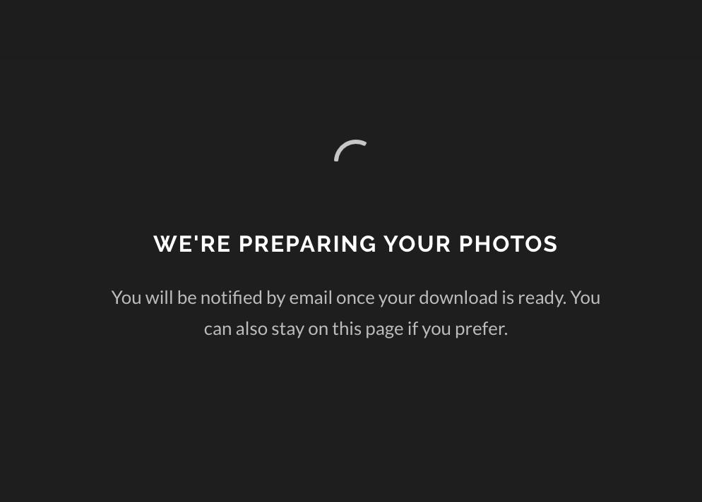 6. GALLERIA VALMISTELEE LATAUSTASI - Tässä vaiheessa galleria tekee sinulle pakatun latauskansion kuvistasi. Odottele hetki.