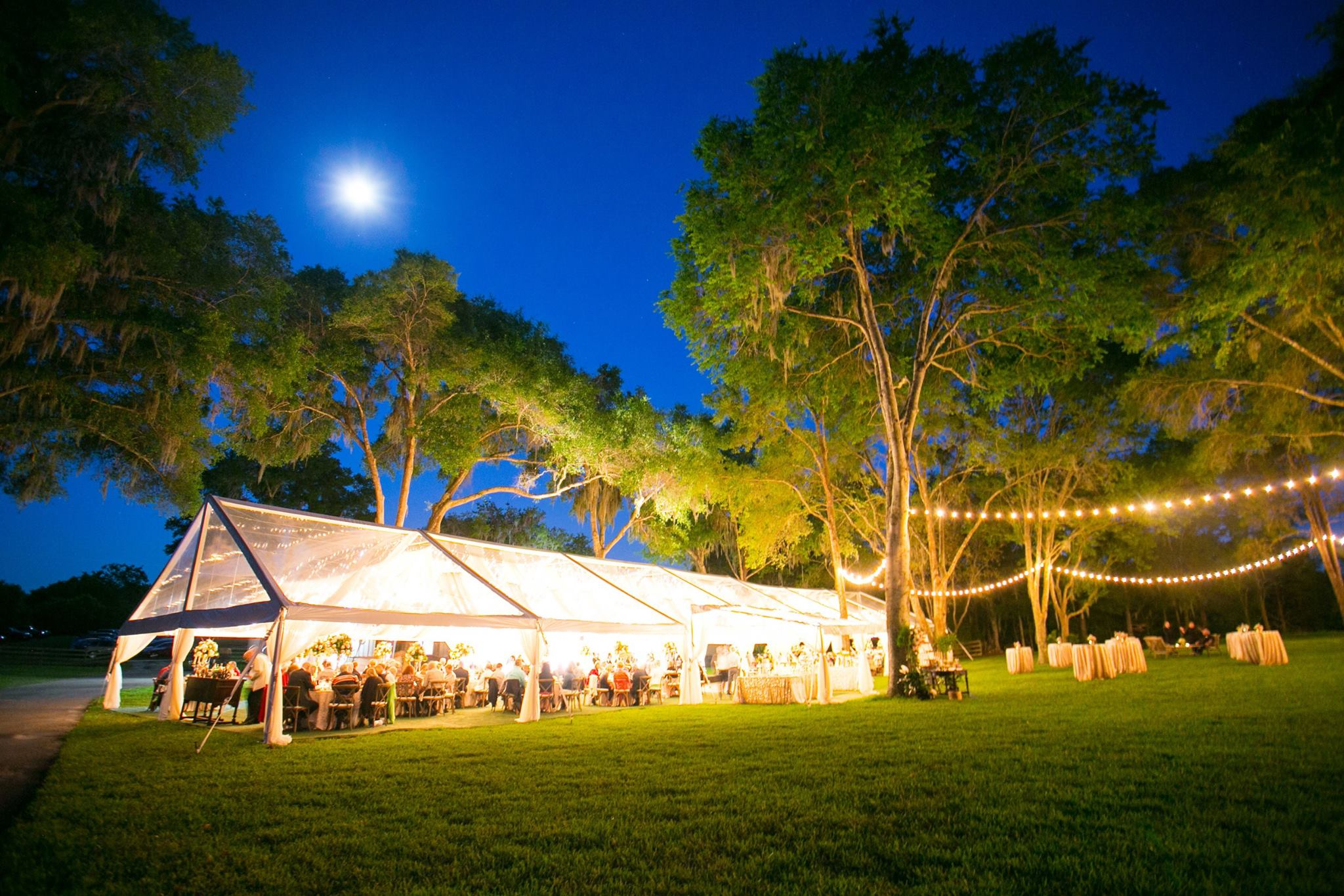 Wedding Stacey Scott Evening Tent.jpg