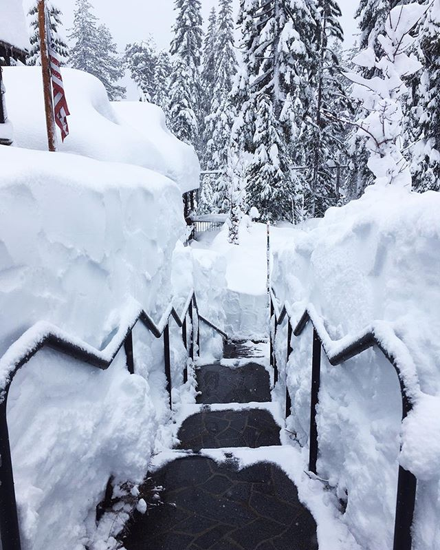 It's safe to say that we have TONS of snow here at Cedar Crest Cottages!!! ❄❄❄ #cedarcrestcottages #laketahoe #snow #somuchsnow #ski #homewood #winter