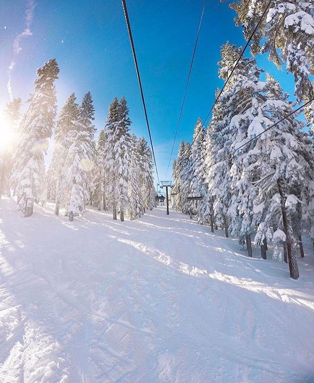 The sun is shining, the skies are blue and the skiing is AWESOME!! Hope everyone is enjoying their holiday weekend ☀️💙❄ #regram via @tahoenorth #homewood #snow #laketahoe #winter #cedarcrestcottages #boutiquehotel #skiday #moutain