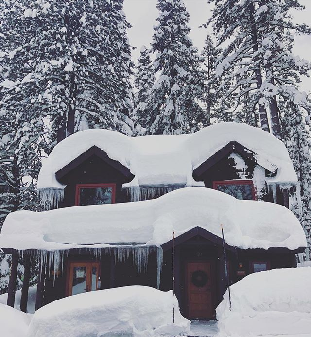 It's a winter wonderland at Cedar Crest Cottages! ❄️💙 #laketahoe #letitsnow #beautiful . . . . . . #tahoe #tahoenorth #tahoesouth #westshoretahoe #renotahoe #sanfrancisco #sf #thebay #bayarea #sacramento #sanjose #snow #pow #winter #cottages #vacationgoals #vacationrental #bnb #cozy #cabinporn #mountains #boutiquehotel #cedarcrestcottages #motel #hotel #staycation