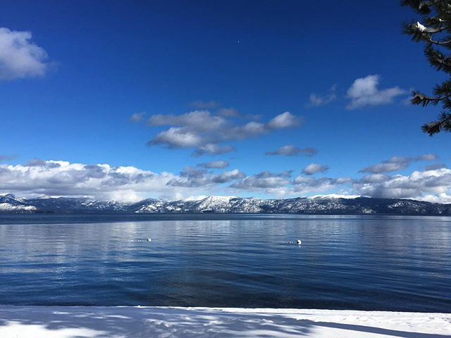 With new snow in the forecast and recently discounted rates, Cedar Crest Cottages is the perfect spot to relax after a long day on the slopes! 💙❄️☃️ #letitsnow #laketahoe #cedarcrestcottages . . . . . #tahoe #tahoenorth #renotahoe #squawvalley #truckee #sanfrancisco #sacramento #thebayarea #SF #boutiquehotel #hotels #cottages #winter #vacation #beautiful #holiday #getaway #vacay #cabin #cabinlife #westshoretahoe #homewood #homewoodskiresort #love #staycation #skiing #snowboarding