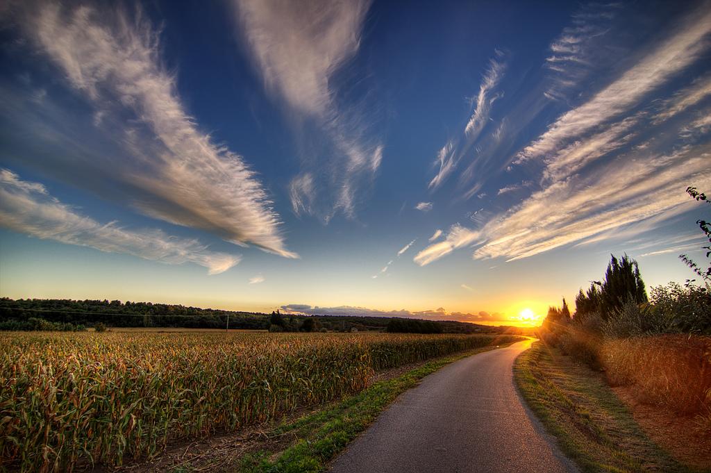 La route vers le champ de maïs au coucher du soleil. Photo by decar66 via Flickr CCL.