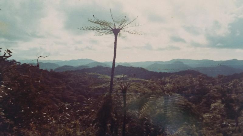 View of the interior of Viti Levu.