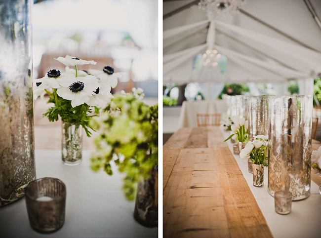 594 wedding and portrait photography charleston sc.jpg