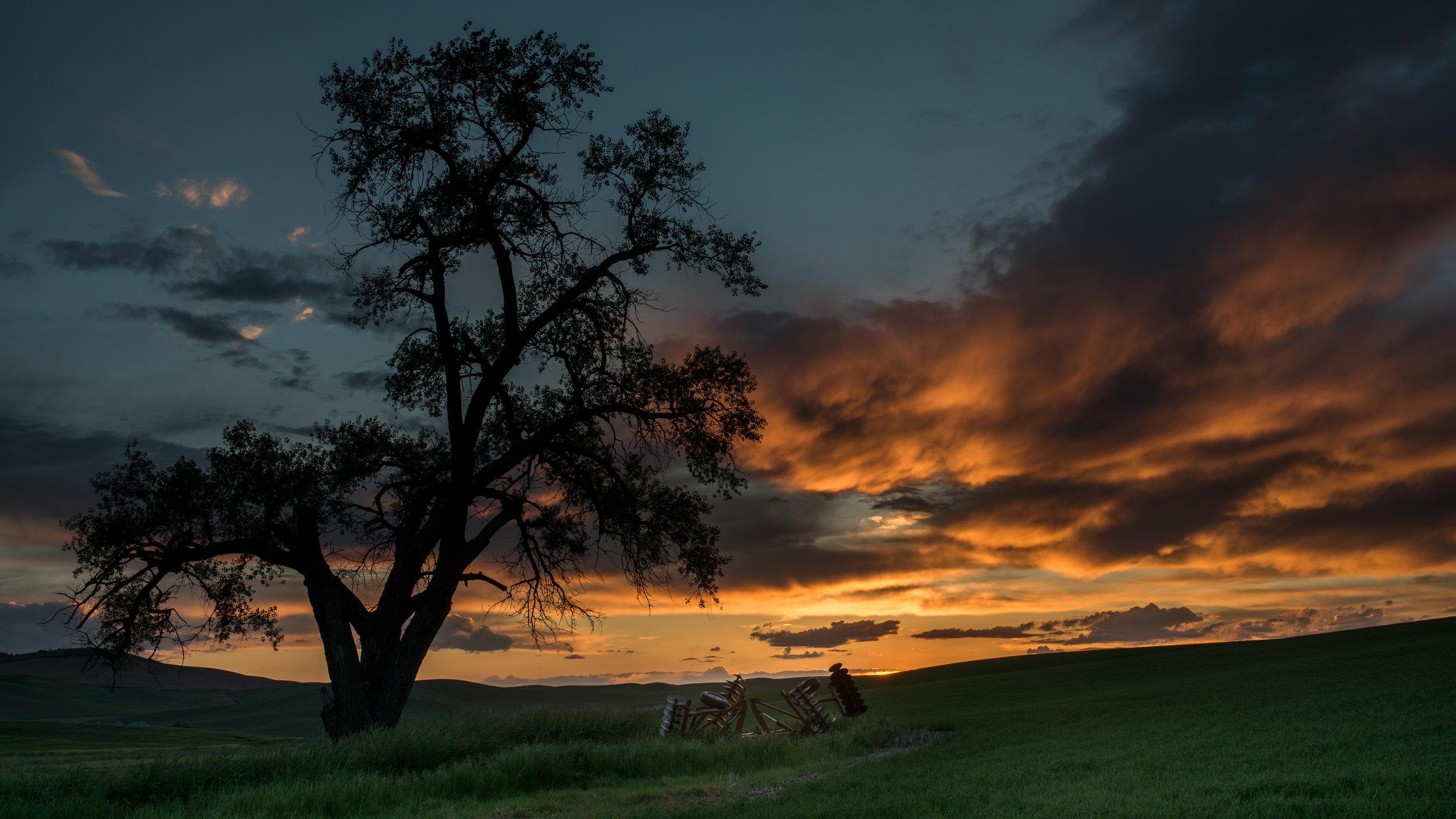 Palouse Sunset (WA)