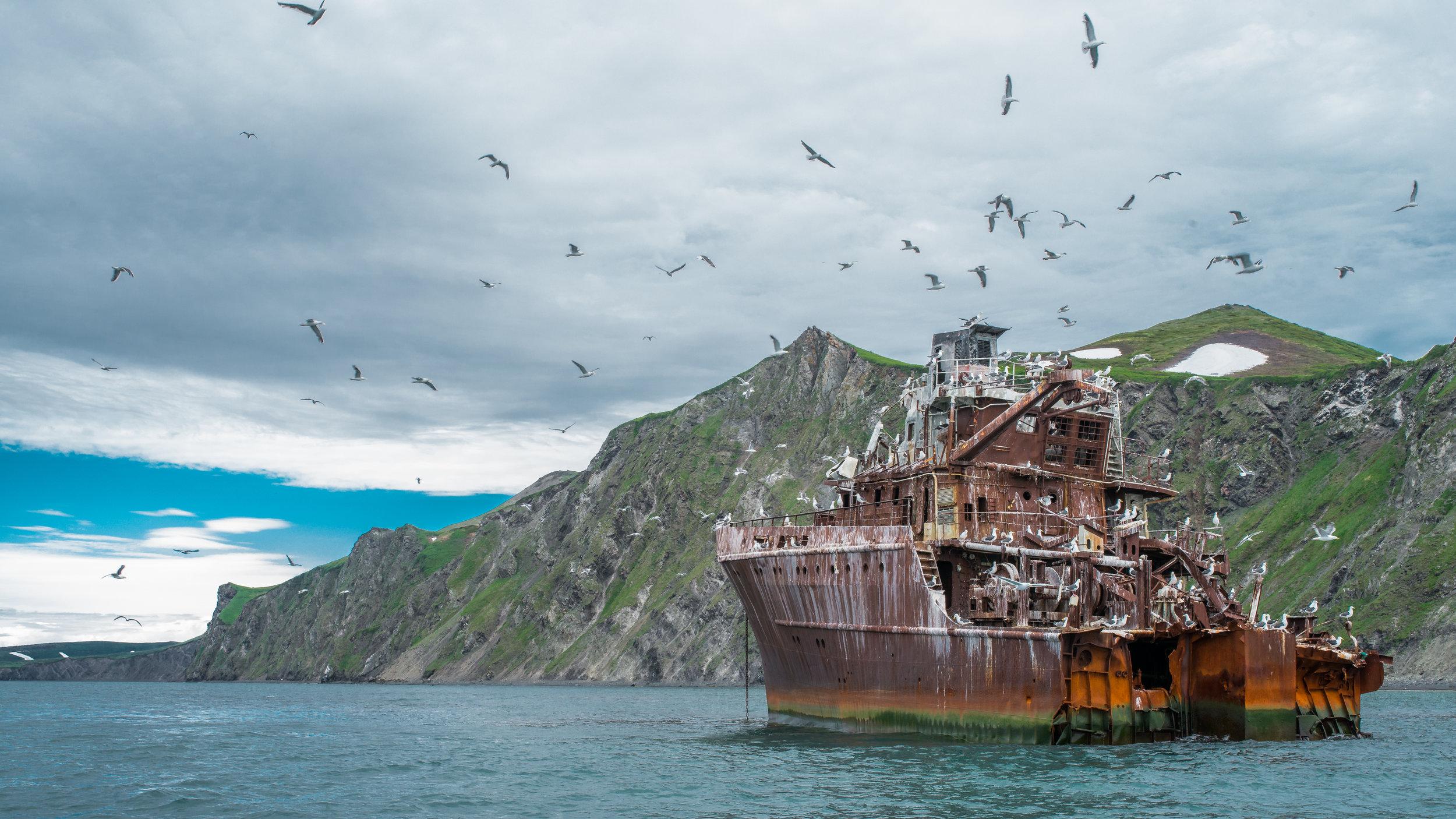 Shipwreck at Bear Gully