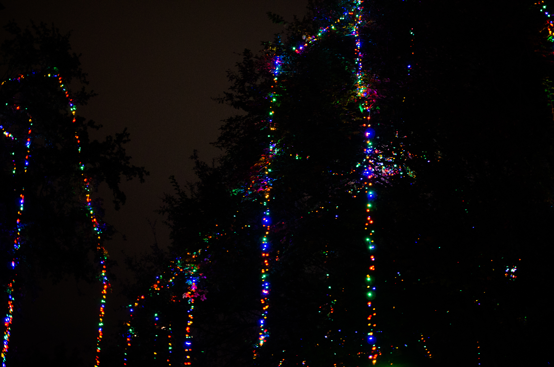 Night lights in San Antonio