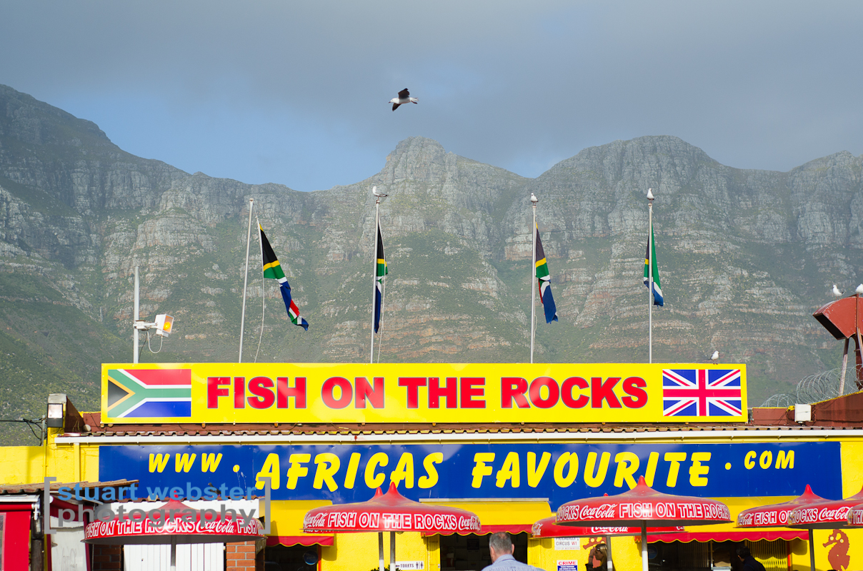 South Africa 2013 (18 of 97).jpg