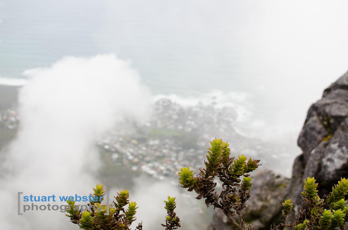 South Africa 2013 (48 of 97).jpg