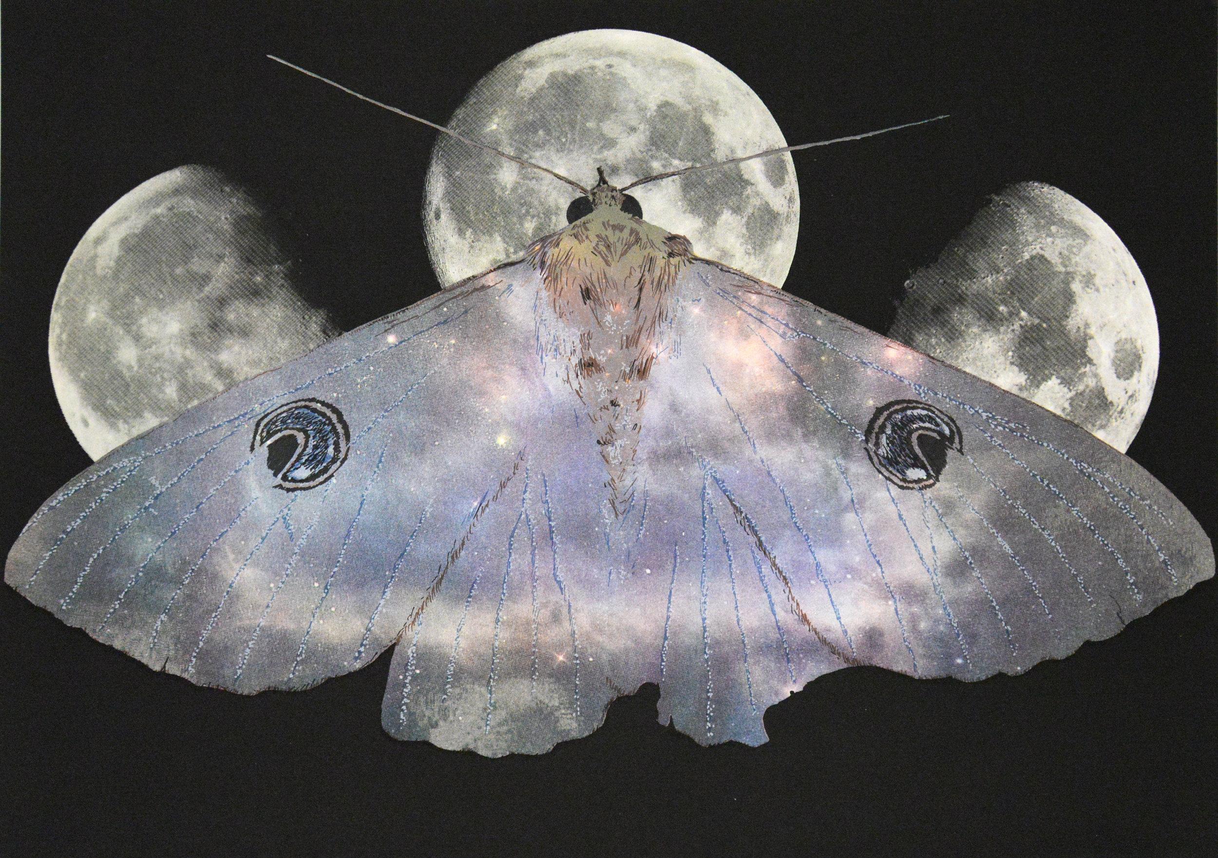 Sequitur Stellarum