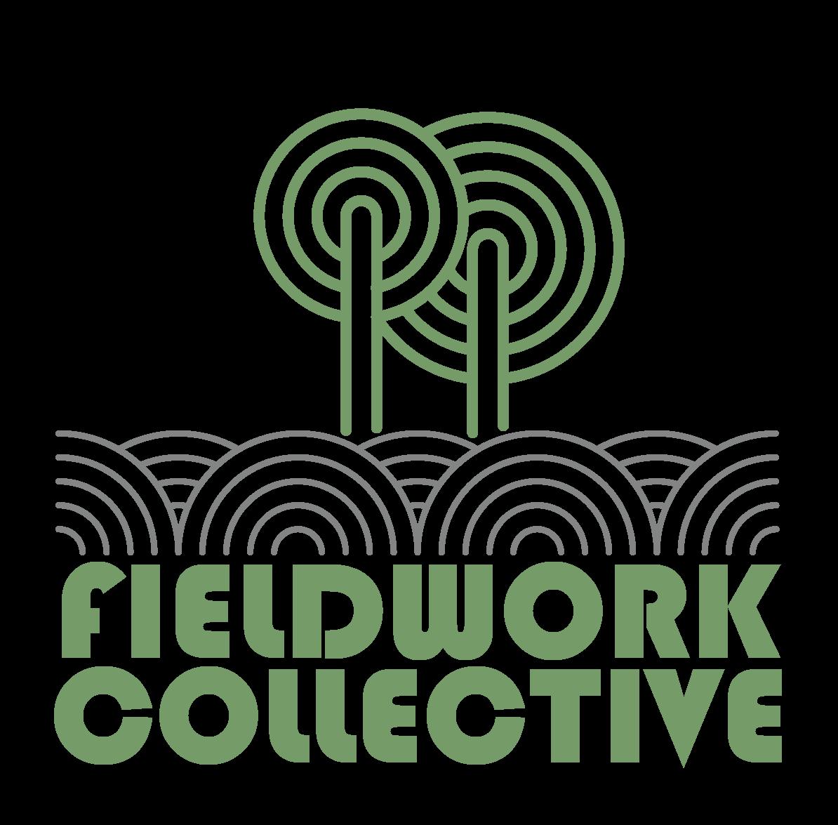 fieldwork-01.png
