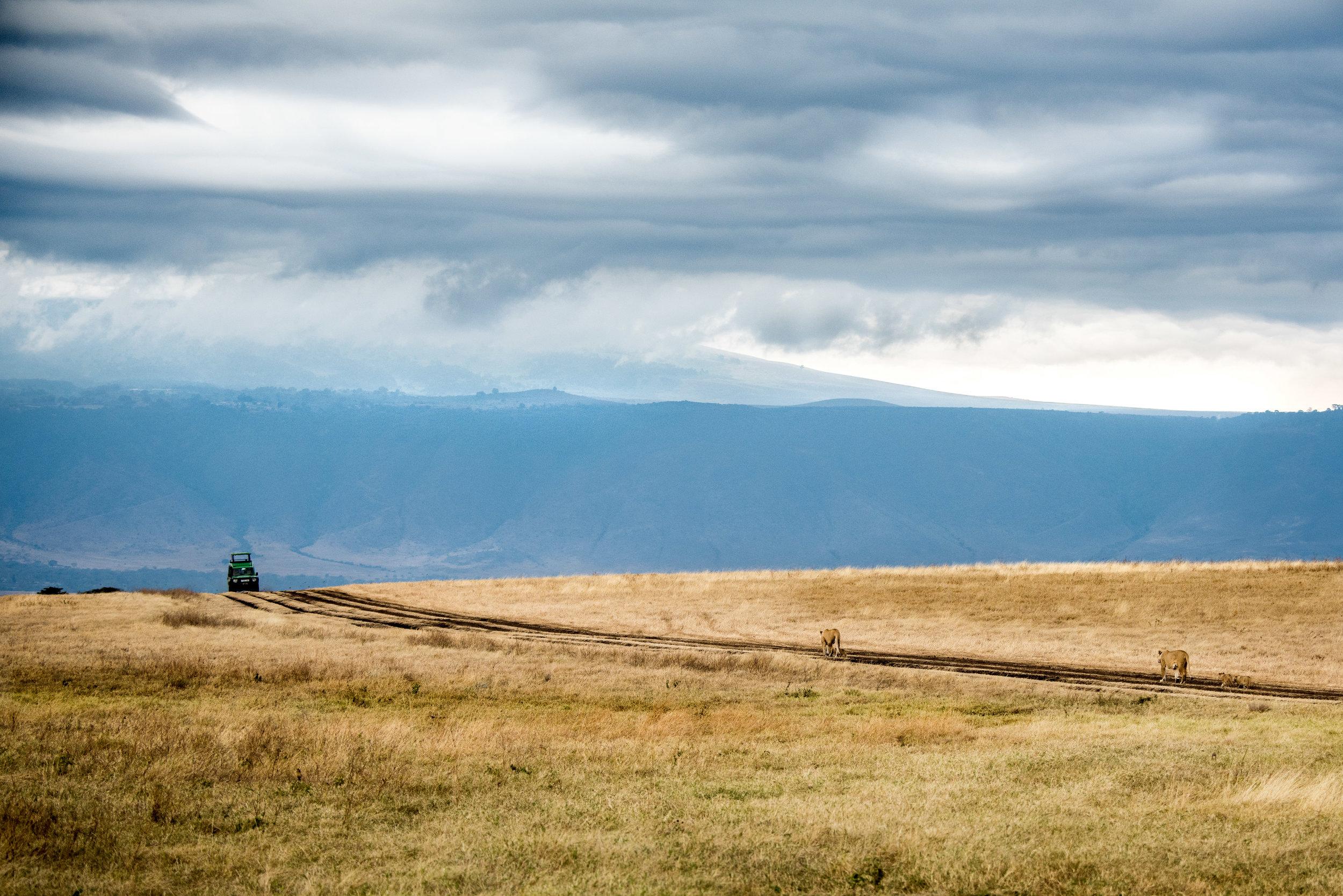 Tanzania-Earth-Photo-By-Tricia-Suriani-Ramsay-12.jpg