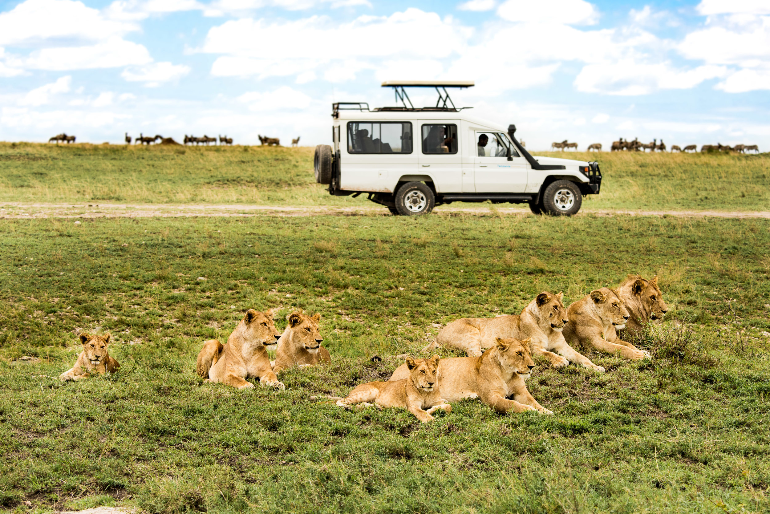 Tanzania-Earth-Photo-By-Tricia-Suriani-Ramsay-11.jpg