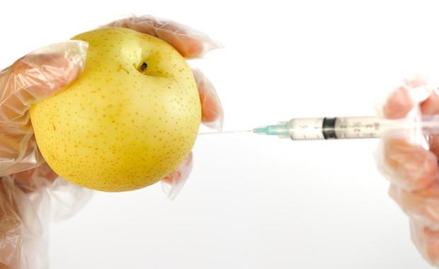 GMO Image