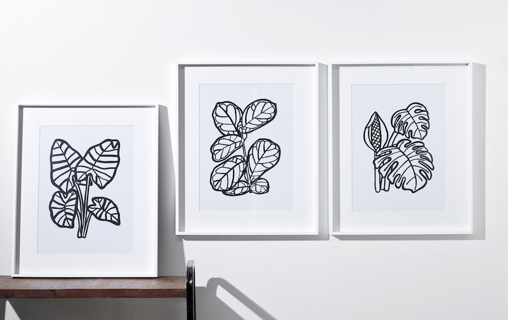 LARGE LEAF SERIES