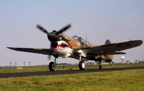 P-40_Warhawk_0004.jpg