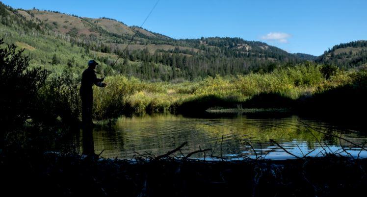 Patrick Dorgan casts into Salt Creek in the southwest corner of Wyoming.