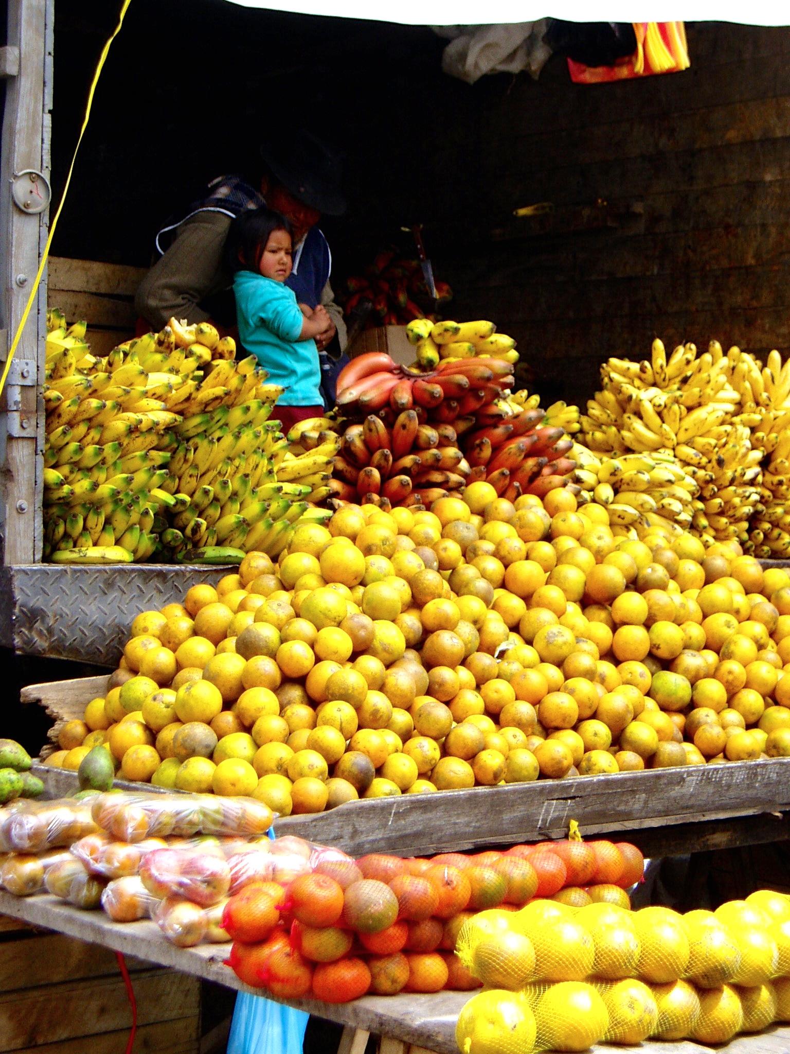 Ecuador 093.jpg
