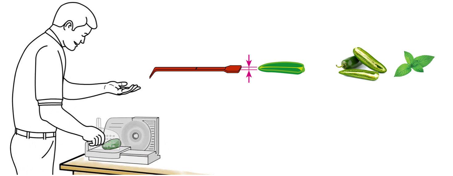 CQ-Black-Raspberry-Açaí-Jalapeno-Mint-Infused-Water-Recipe-Step-1-Cut-Fruit-Using-CQ-Slicer-Key.jpg