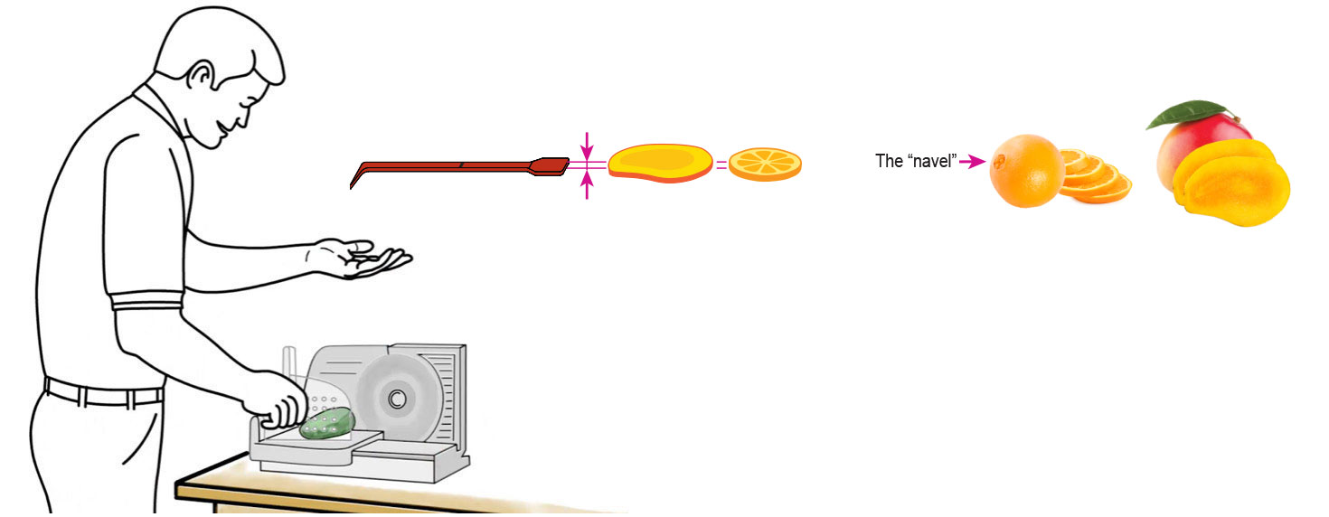 CQ-MANGO-ORANGE-Infused-Water-Recipe-Step-1-Cut-Fruit-Using-CQ-Slicer-Key.jpg