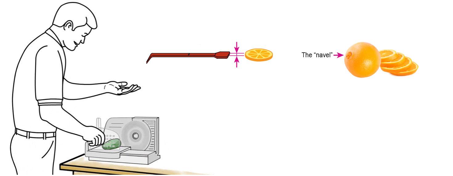 CQ-Red-Raspberry-Pomegranate-Orange-Infused-Water-Recipe-Step-1-Cut-Fruit-Using-CQ-Slicer-Key
