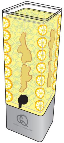 CQ-Lemon-Ginger-Spa-Water-Recipe-Example-Image