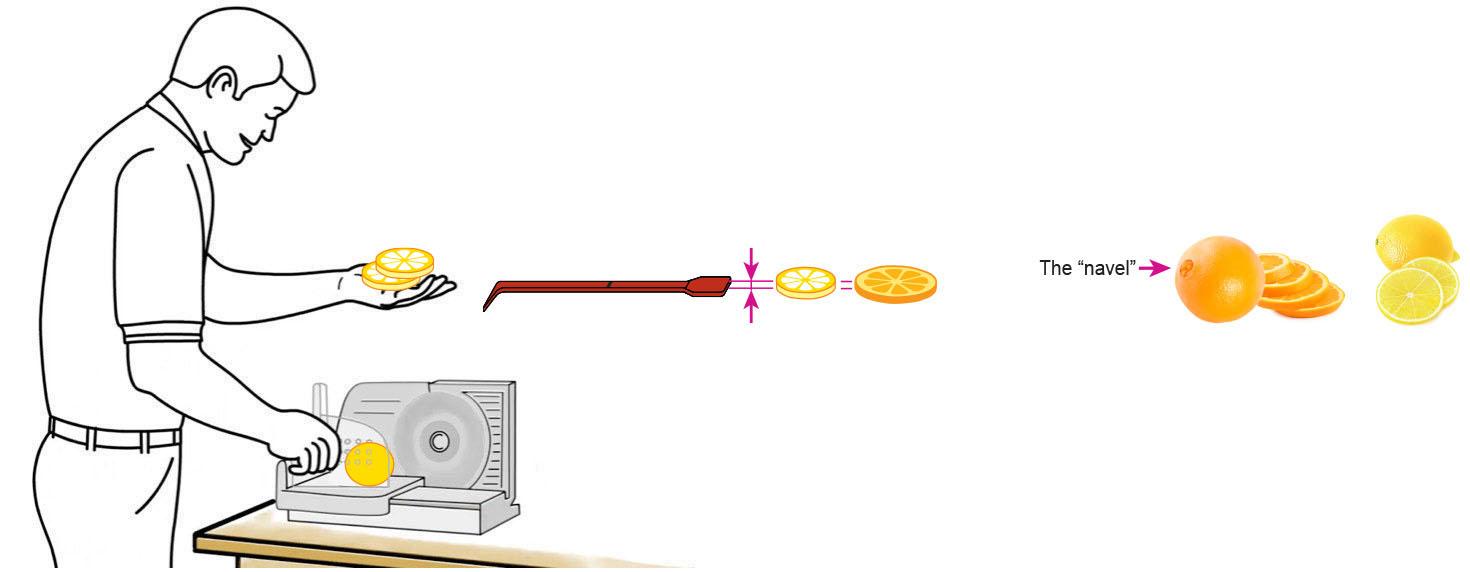 CQ-Lemon-Orange-Iced-Tea-Recipe-Step-1-Cut-Fruit-Using-CQ-Slicer-Key.jpg