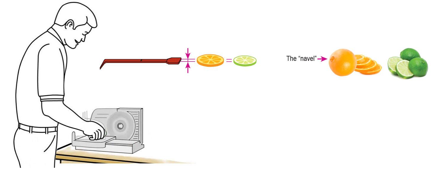 Derby-Margarita-Mix-Cocktail-Mixer-Recipe-Step-1-Cut-Fruit-Using-CQ-Slicer-Key