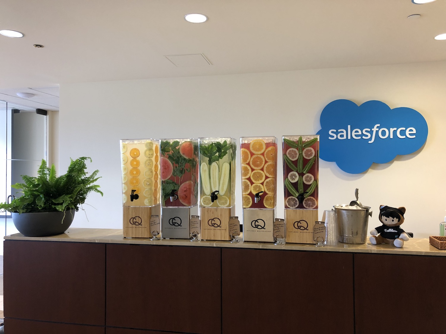 CQ Infused Waters at Salesforce