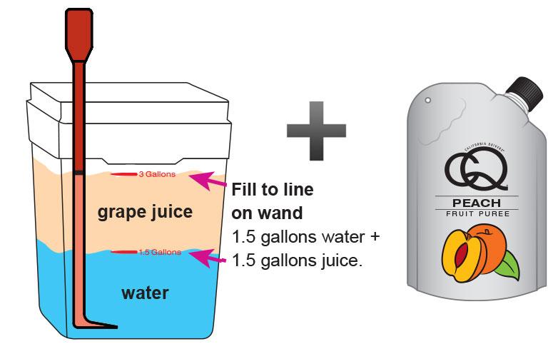 Peach-Grape-Ginger-Juice-Infusion-2.jpg