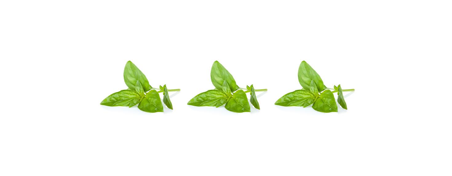 CQ-Strawberry-Basil-Infused-Water-Recipe-Step-1-Cut-Fruit-Using-CQ-Slicer-Key.jpg