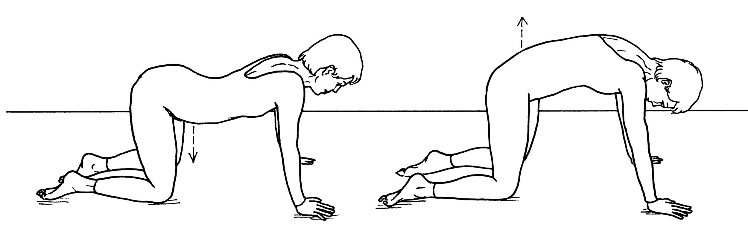9.cat stretch var. lower back.jpg