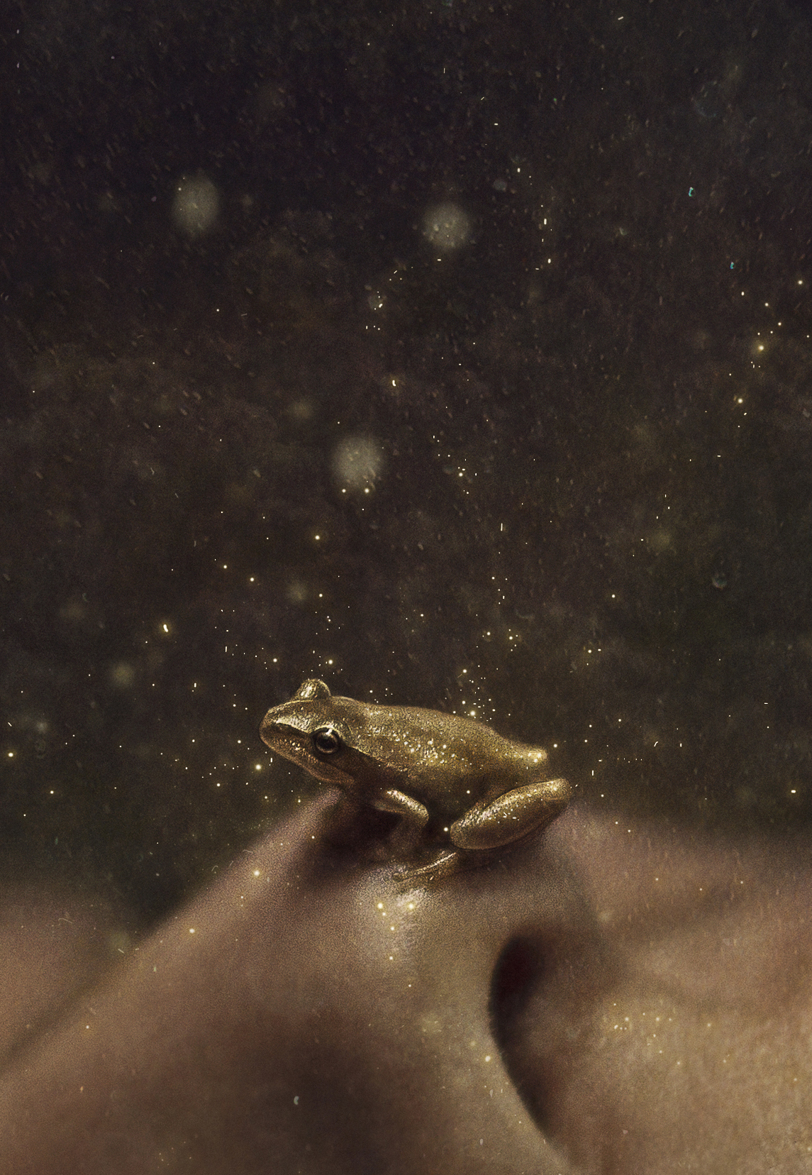 I decided to make the frog look golden because in the fairytale the princess andfrog meet because she drops her goldball into his pond.