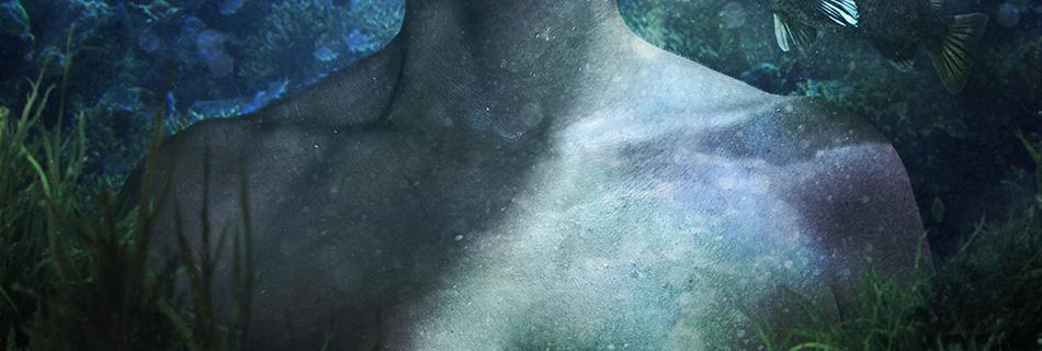 seaweed close up detail shot