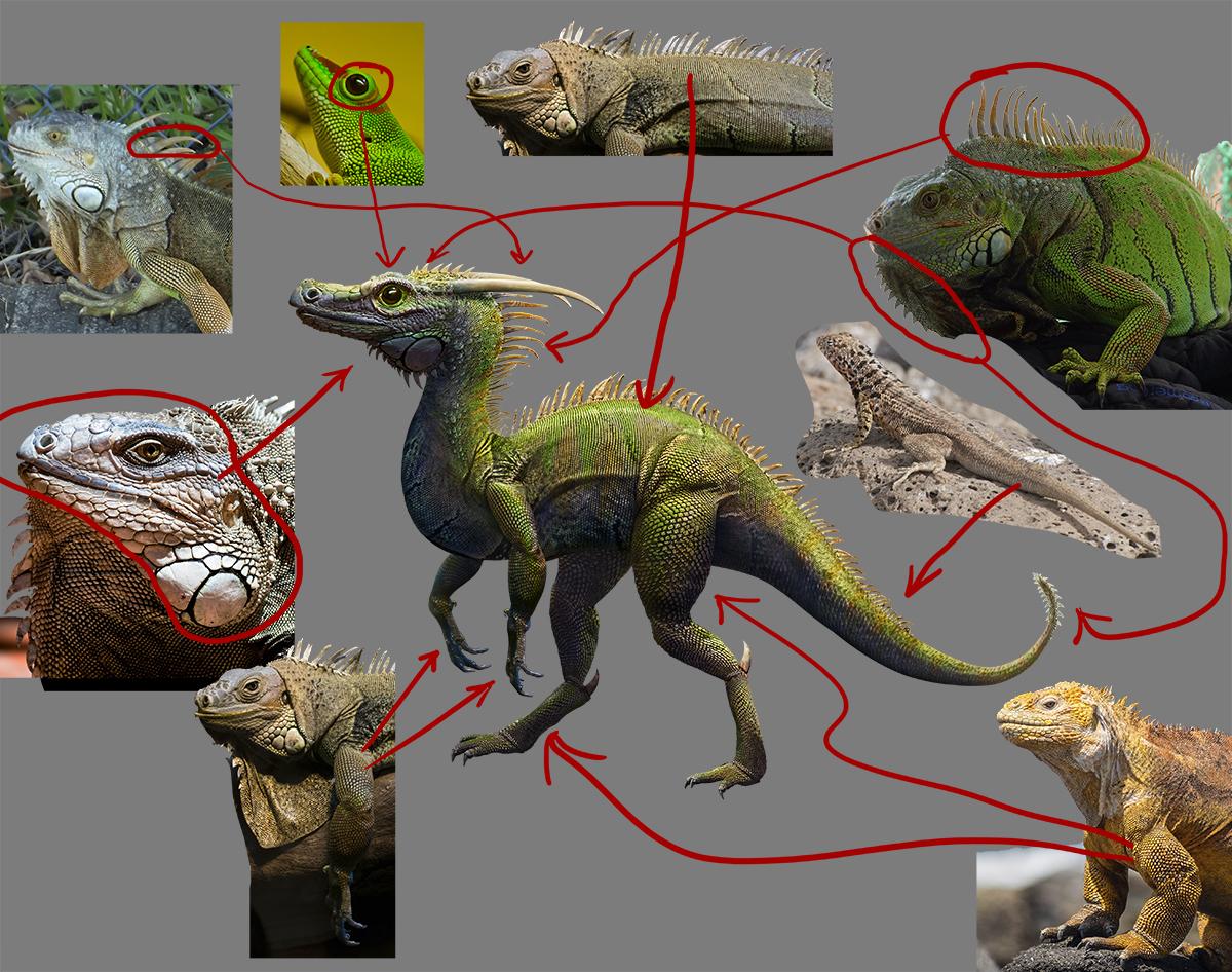 dragon creature source images