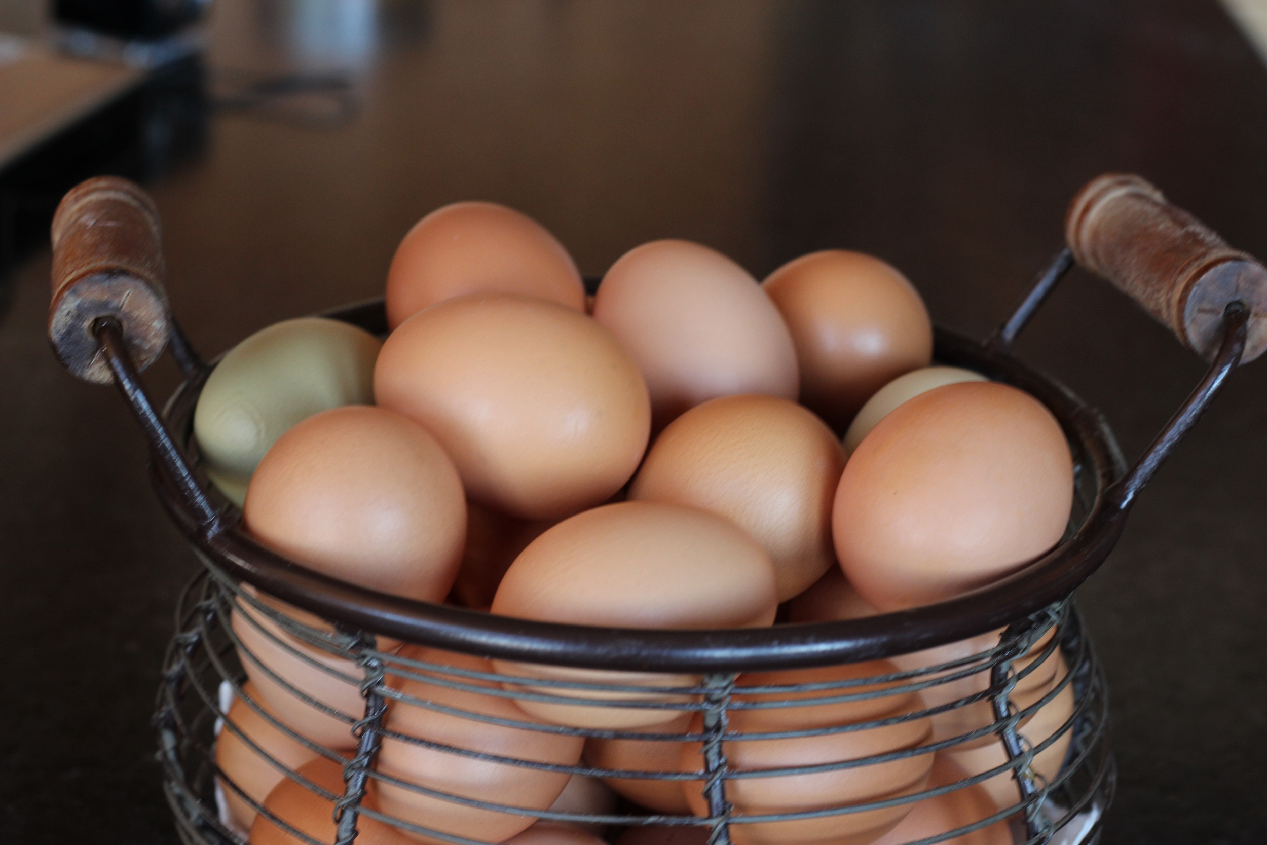 Fresh eggs from the henhouse.