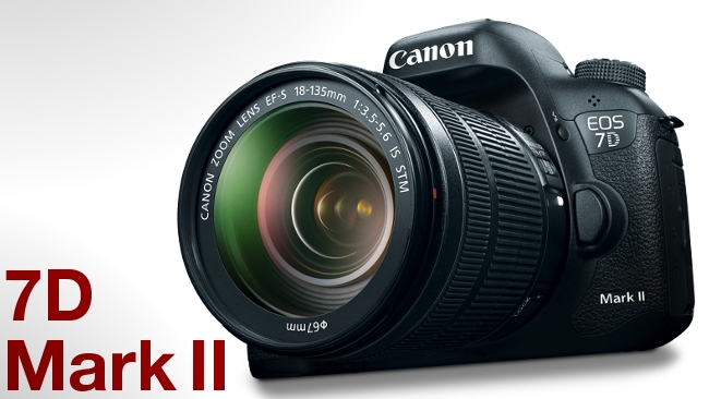 The Canon 7D mkII - a totally underwhelming camera. image - redsharknews.com