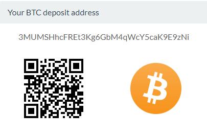 Your main login screen shows your  Bitpanda wallet  details
