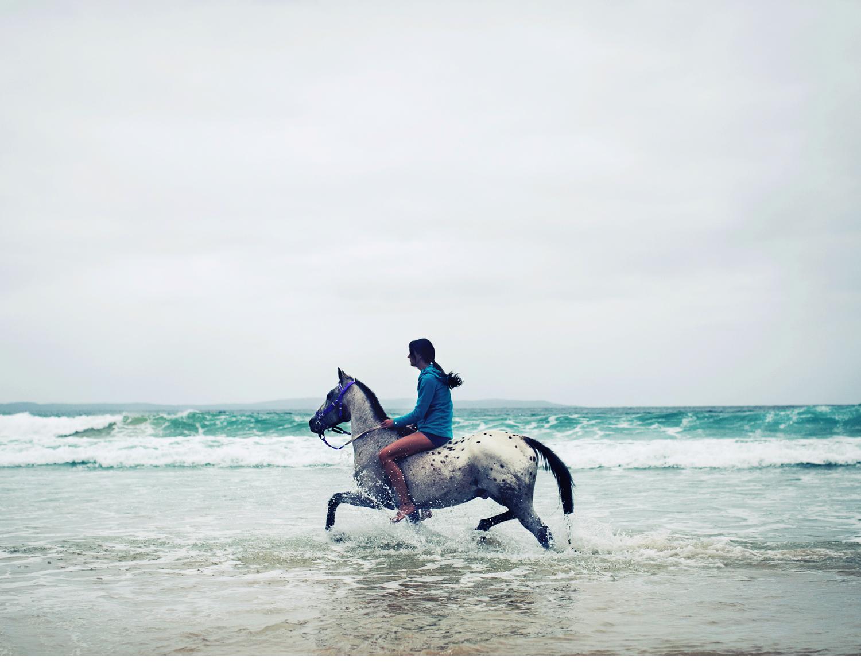 Sheridan.Nilsson.Horse.Portrait.07.jpg